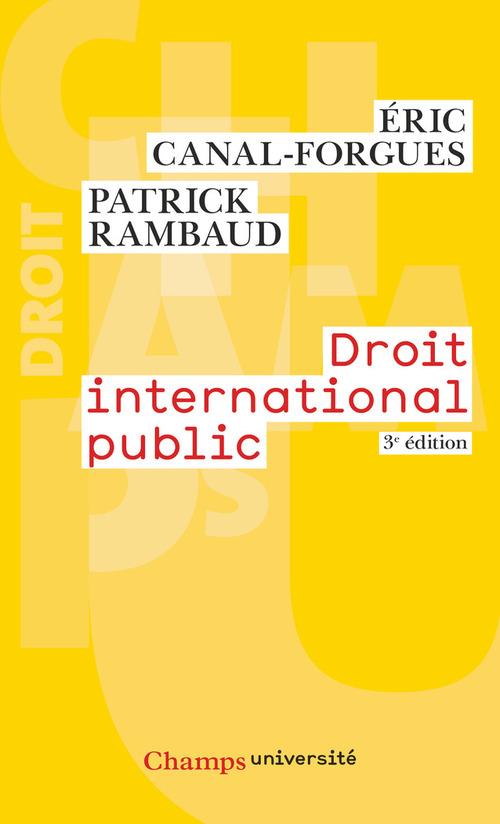 Patrick Rambaud Droit international public