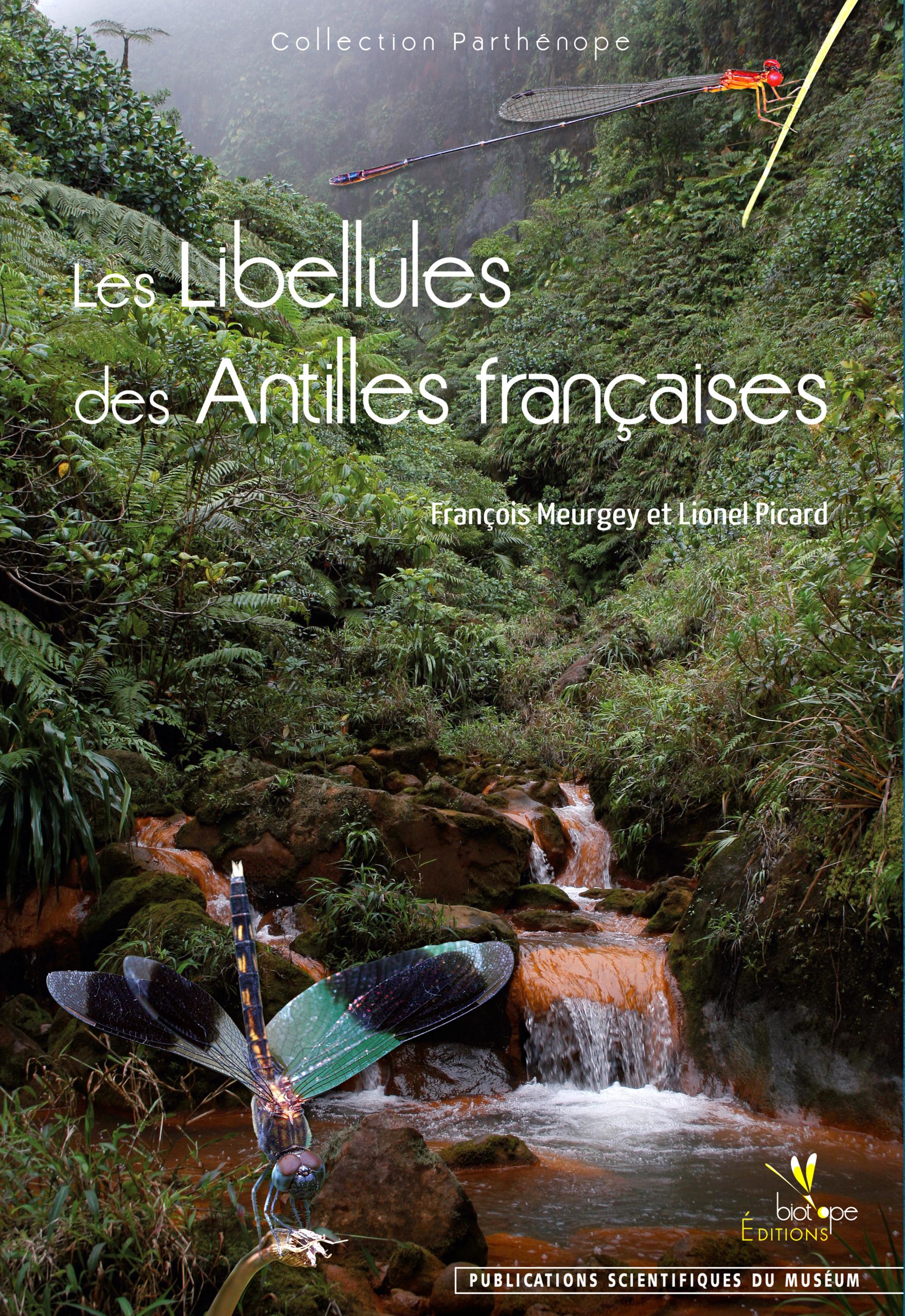 François  Meurgey Les Libellules des Antilles françaises