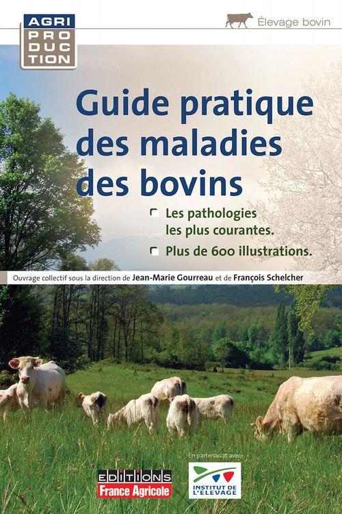 Collectif Guide pratique des maladies des bovins