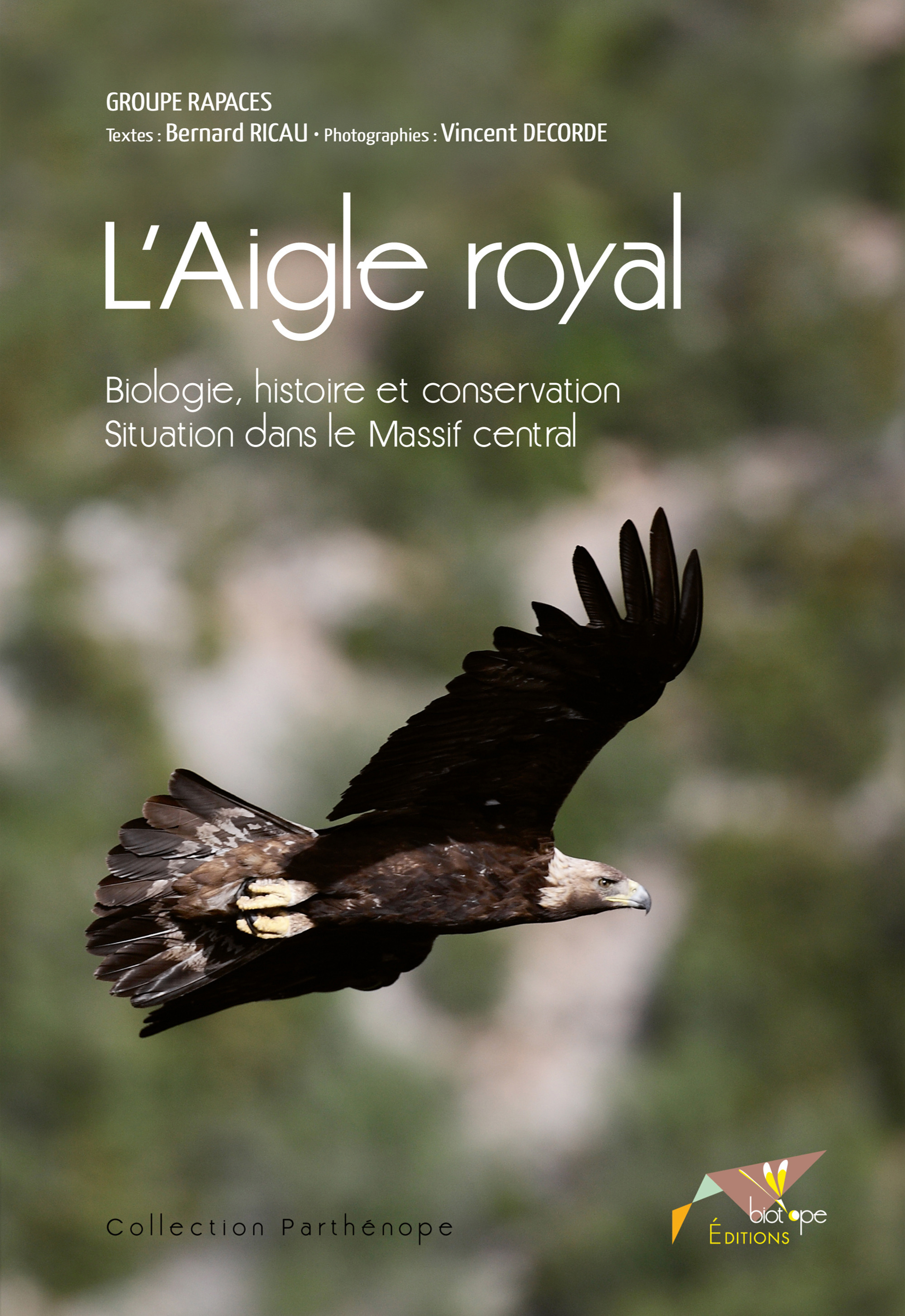 Vincent Decorde L´Aigle royal