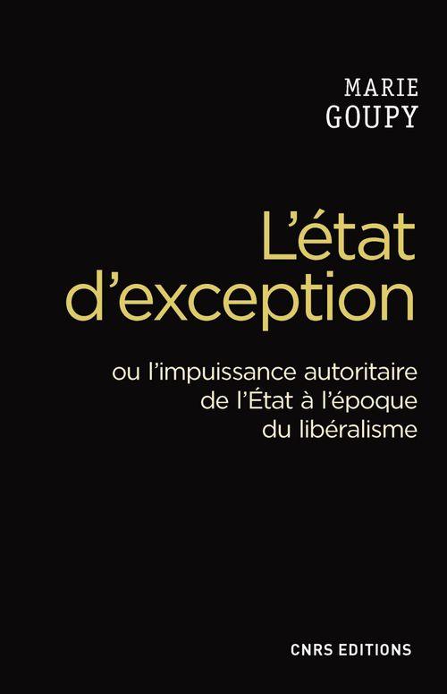 Marie Goupy L'Etat d'exception. Crise du libéralisme et usages de la crise
