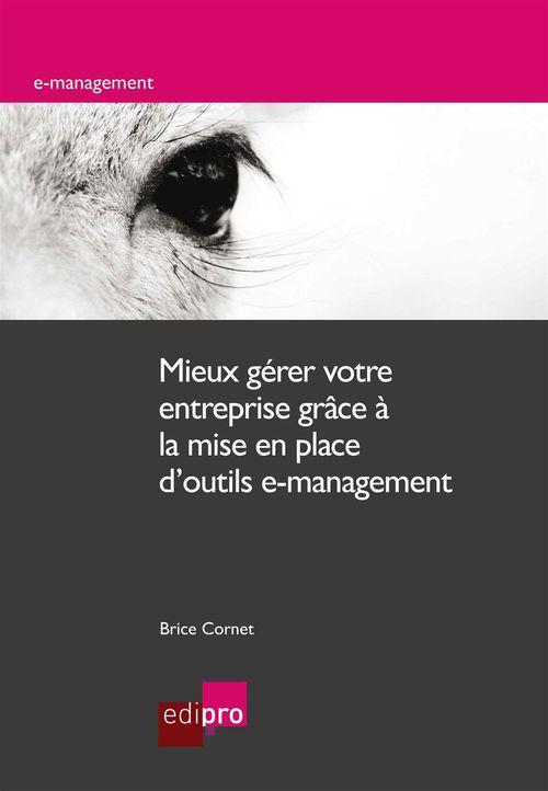 Brice Cornet Mieux gérer votre entreprise grâce à la mise en place d'outils e-management