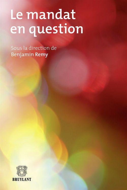 Remy Benjamin Le mandat en question