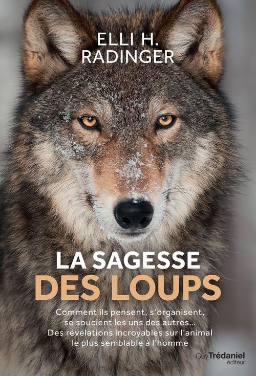 La sagesse des loups ; comment ils pensent, s'organisent, se soucient des autres... des révélations incroyables sur l'animal le plus semblable à l'homme