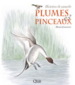 Plumes et pinceaux ; histoires de canards