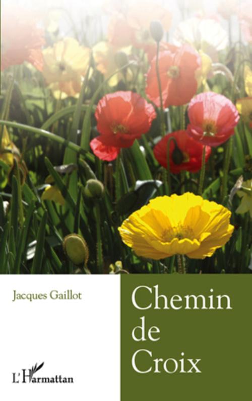 Jacques Gaillot Chemin de croix