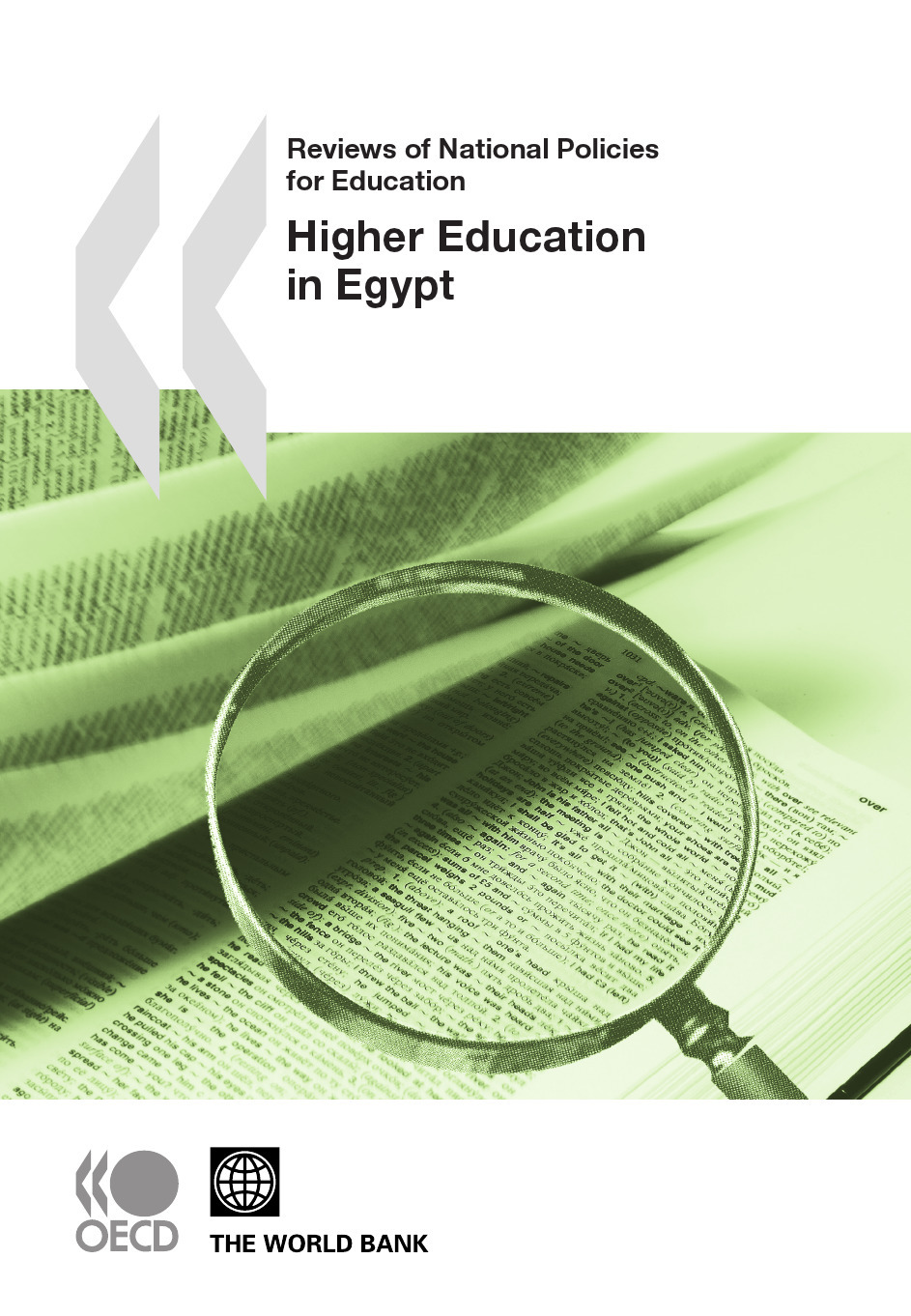 Collective Reviews of National Policies for Education: Higher Education in Egypt 2010