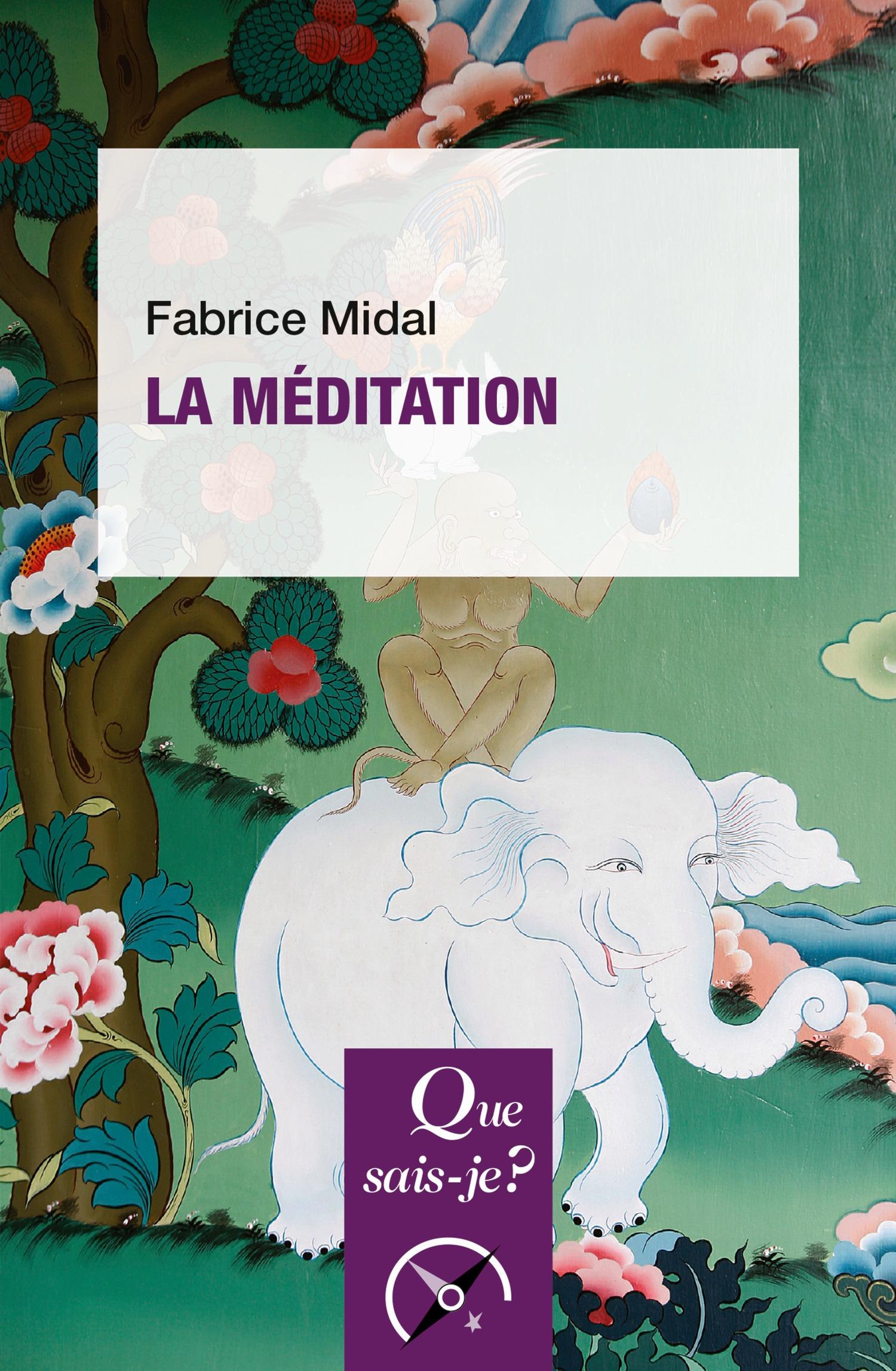 Fabrice Midal La méditation