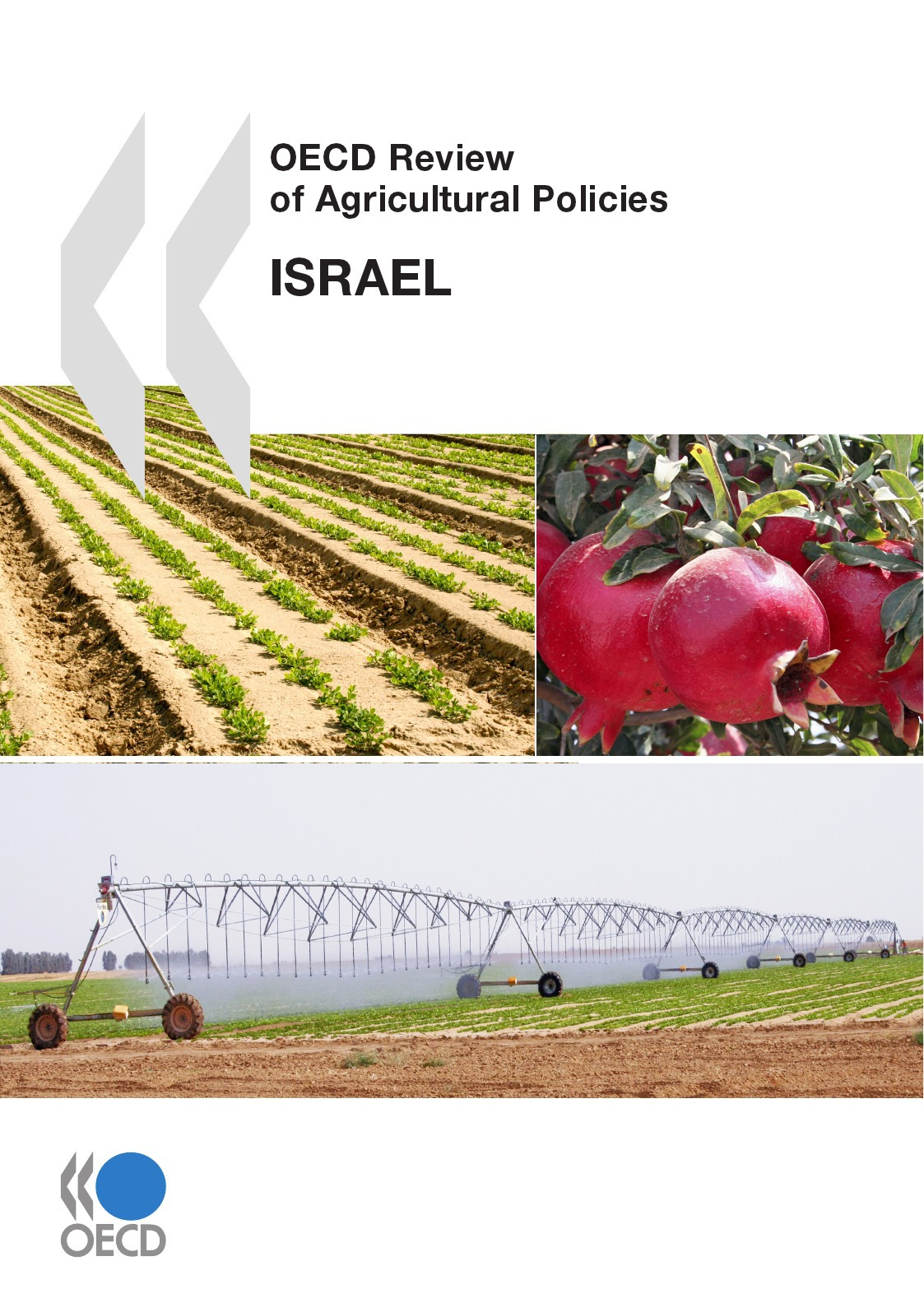 Collective OECD Review of Agricultural Policies: Israel 2010