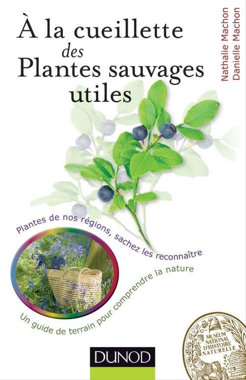 À la cueillette des plantes sauvages utiles