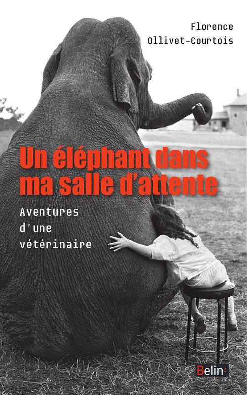 Florence Ollivet-Courtois Un éléphant dans ma salle d´attente