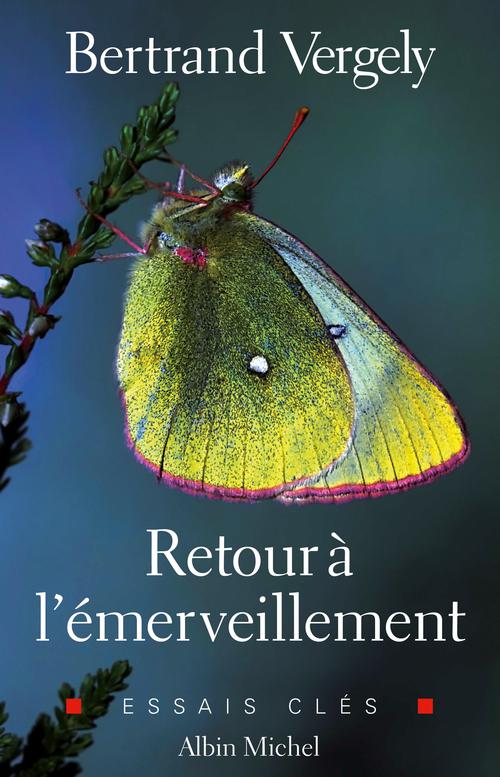 Bertrand Vergely Retour à l'émerveillement