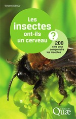 Les insectes ont-ils un cerveau ? 200 cls pour comprendre  les insectes