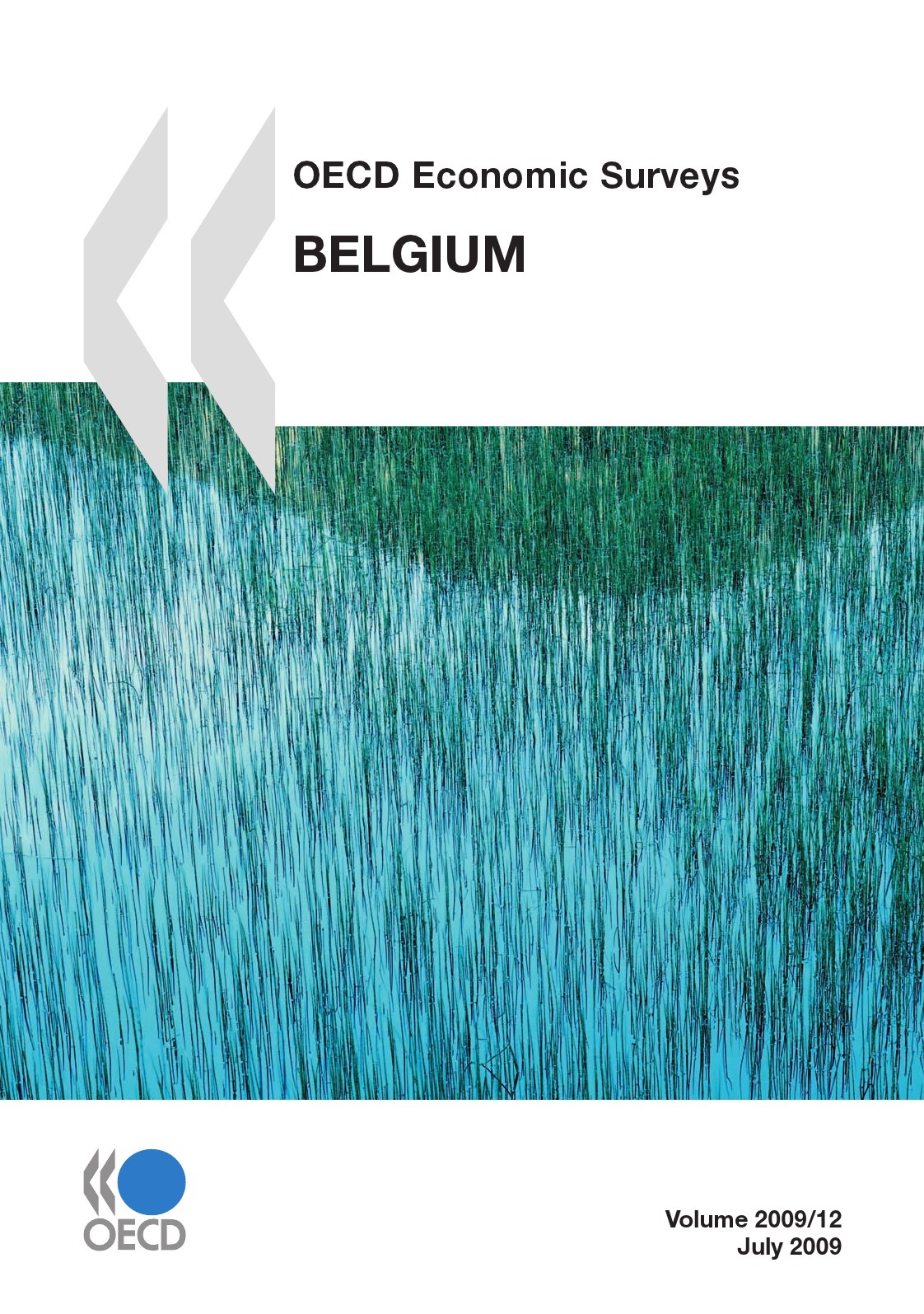 Collectif Belgium ; oecd economic surveys 2009