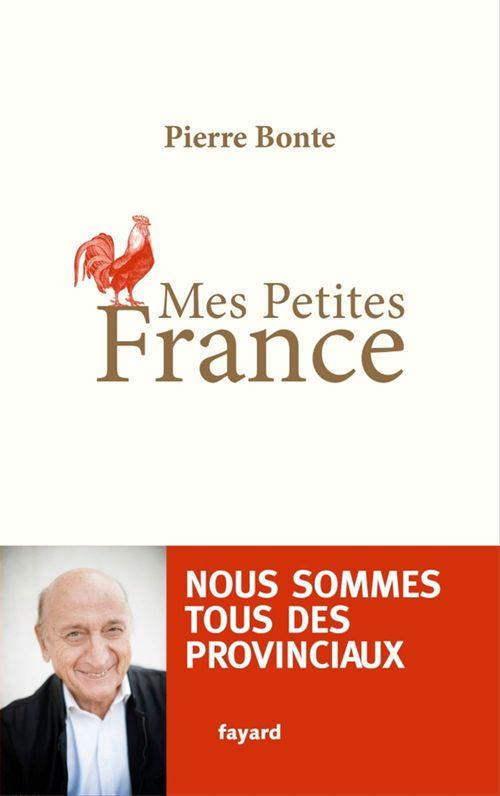Pierre Bonte Mes petites France