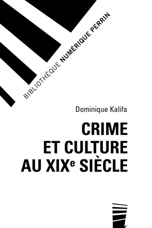 Crime et culture au XIXe siècle