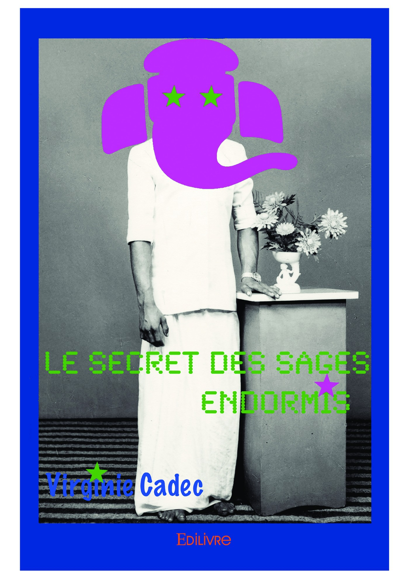 Virginie Cadec Le Secret des sages endormis