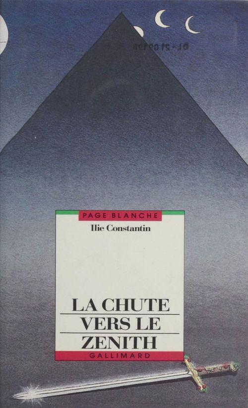 Ilie Constantin La Chute vers le zénith