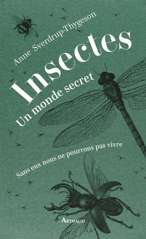 Insectes ; un monde secret