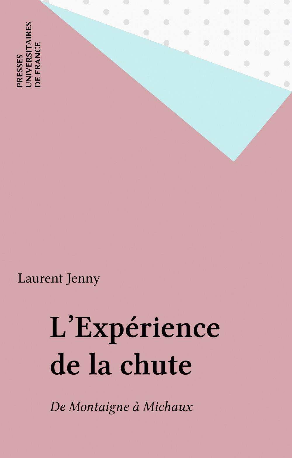 Laurent Jenny L'Expérience de la chute