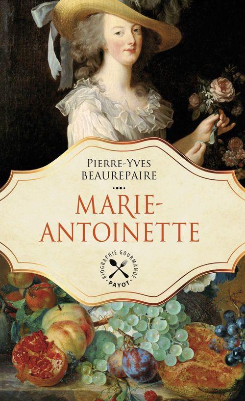 Pierre-Yves Beaurepaire Marie-Antoinette