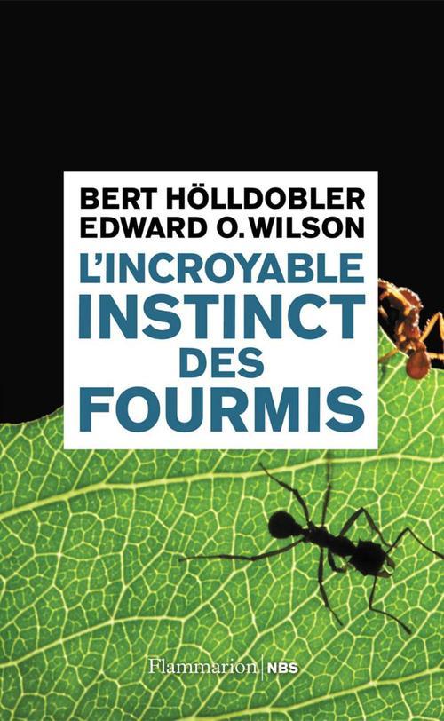 Edward O. Wilson L'incroyable instinct des fourmis