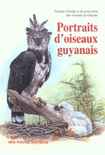 Portraits d'oiseaux guyanais