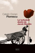 Le Turbulent destin de Jacob Obertin