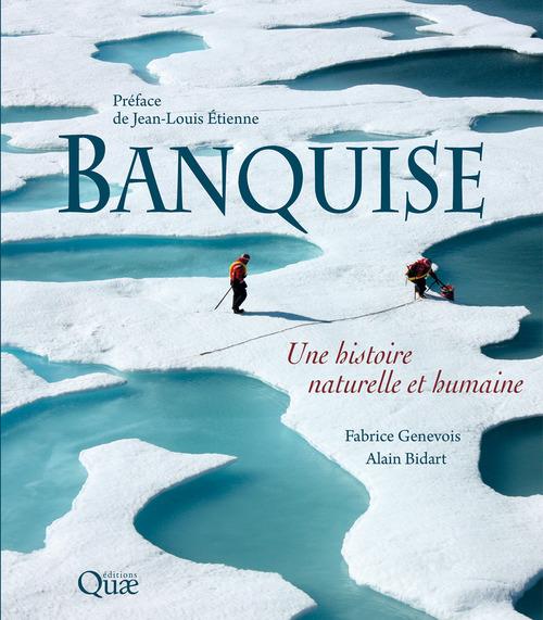 Fabrice Genevois Banquise