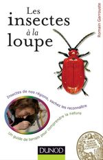 Les insectes  la loupe