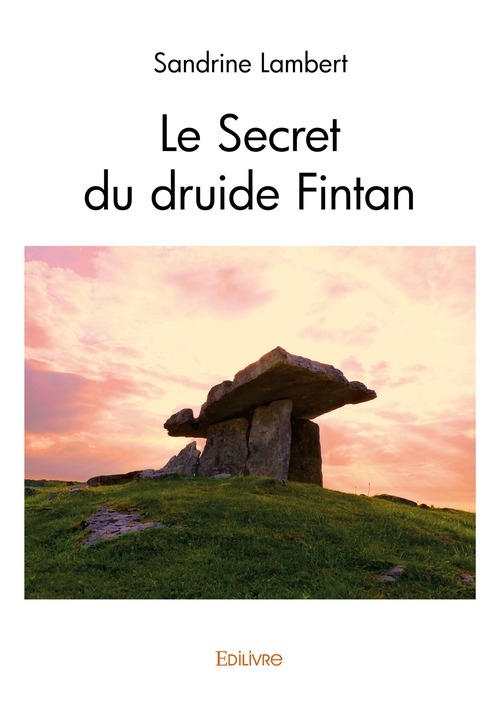 Le Secret du druide Fintan