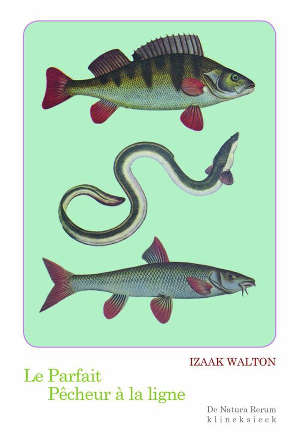 Le parfait pêcheur à la ligne