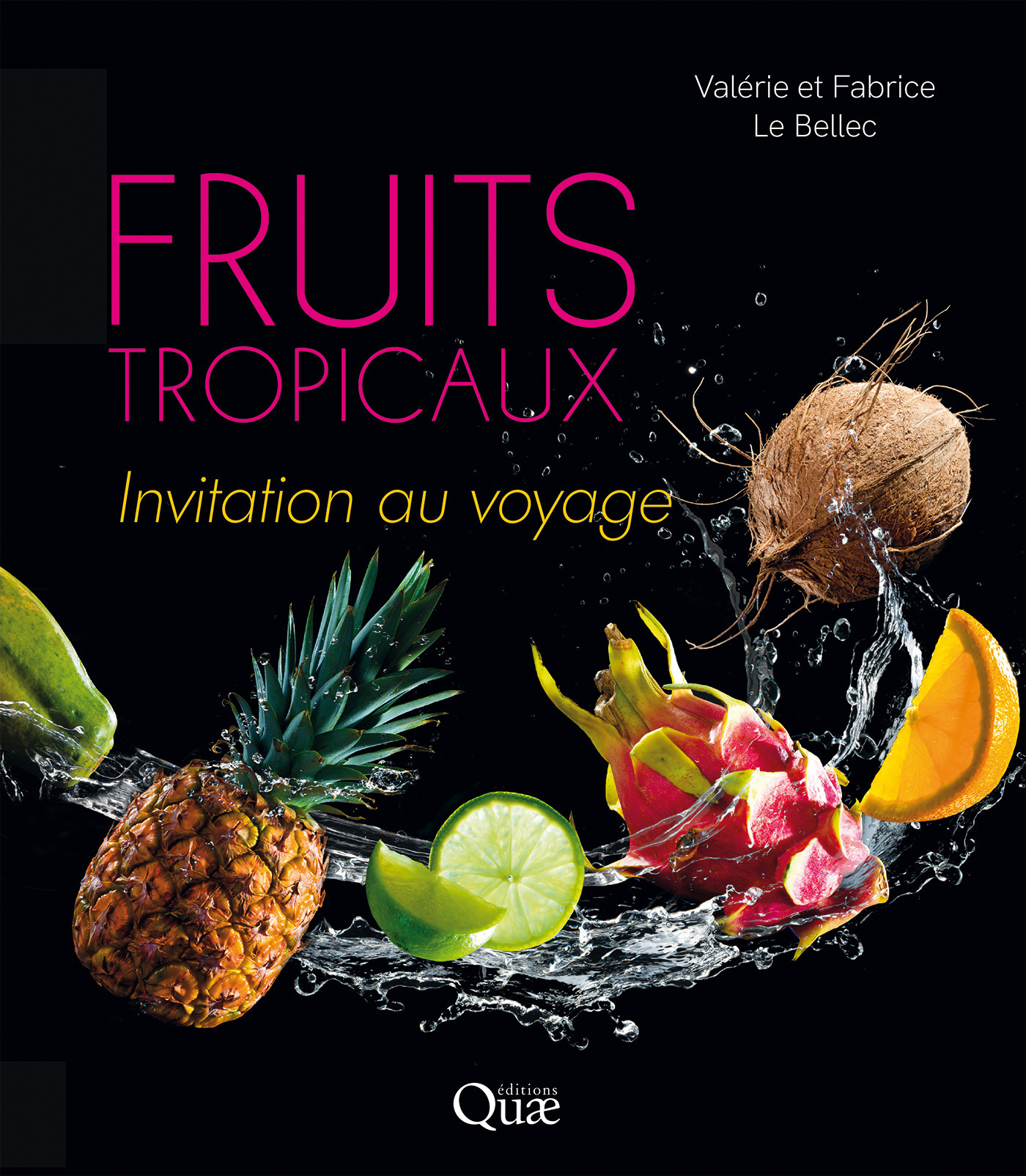 Fruits tropicaux ; invitation au voyage