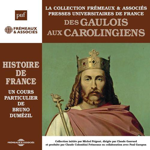 Histoire de France (Vol. 1) - Des Gaulois aux Carolingiens