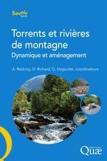 Vente Livre Numérique : Torrents et rivières de montagne  - Didier Richard - Alain Recking - Gerard Degoutte
