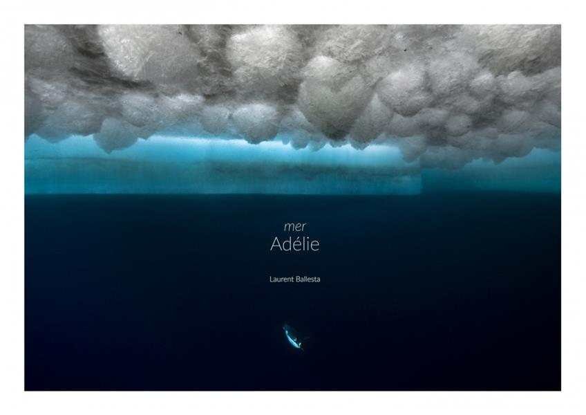 Adélie, terre et mer
