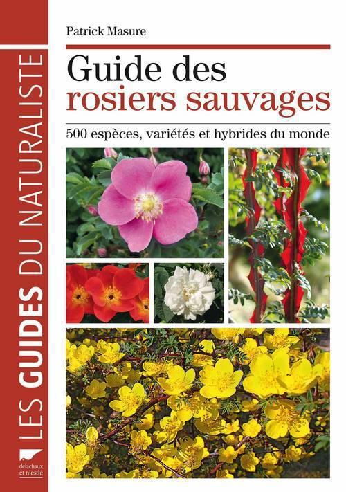 Guide des rosiers sauvages ; 500 espèces, variétés et hybrides du monde