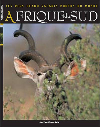 Les plus beaux safaris photos du monde ; Afrique du Sud