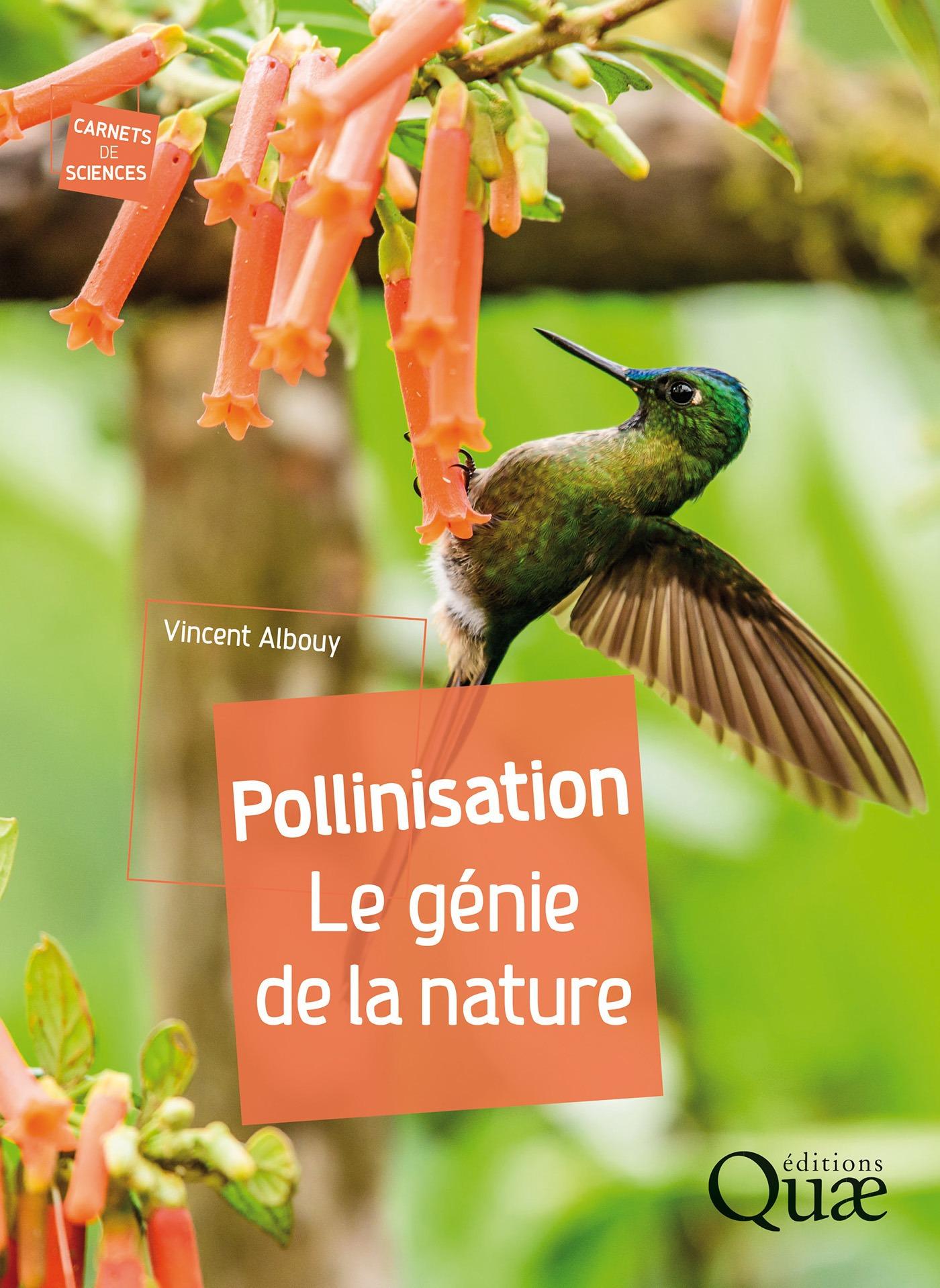 Pollinisation ; le génie de la nature