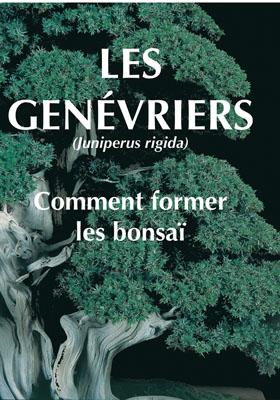 Les Genevriers ; Comment Former Les Bonsai