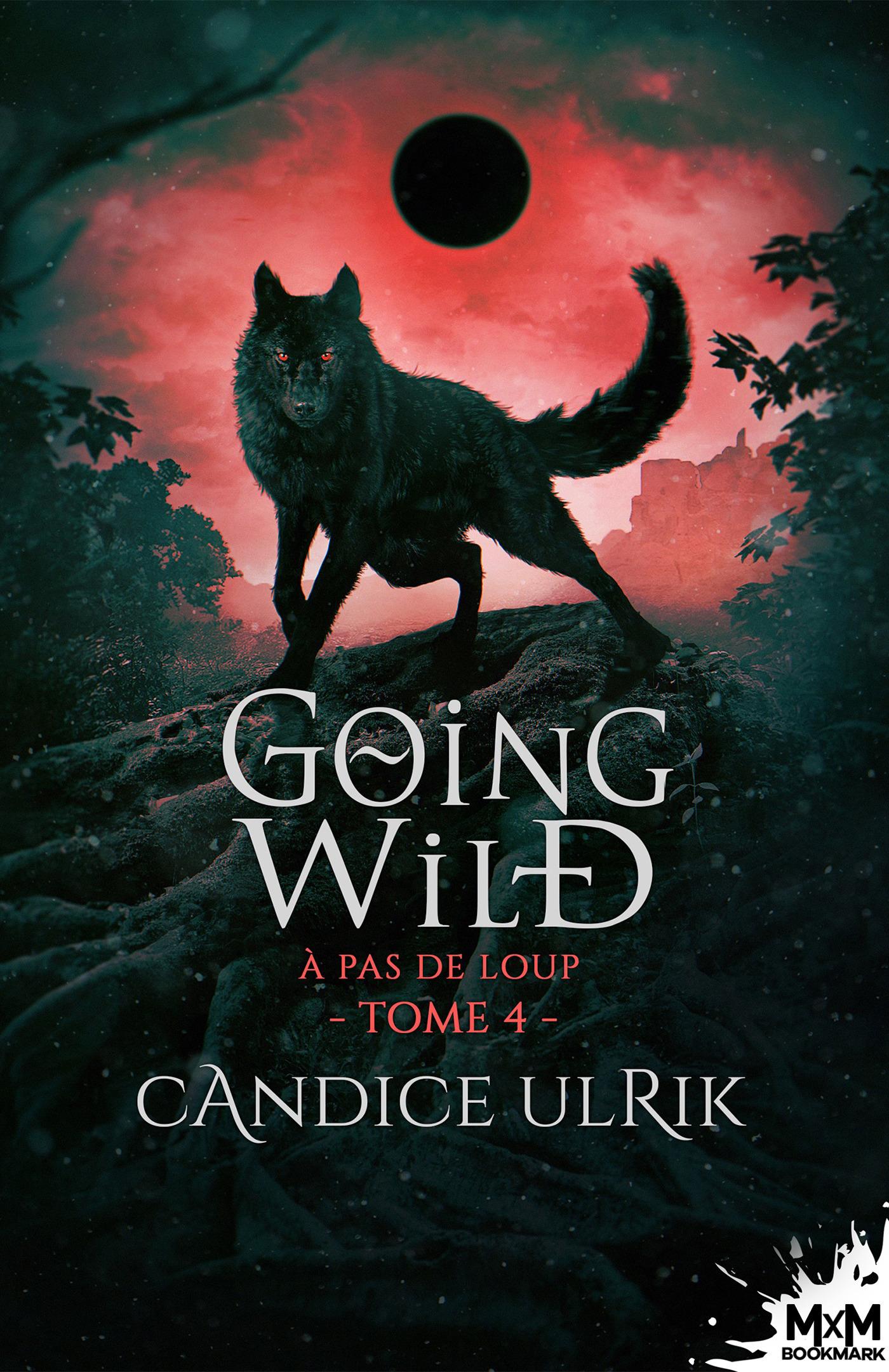 Vente Livre Numérique : À pas de loup  - Candice Ulrik