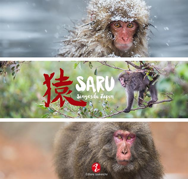 Saru ; singes du Japon