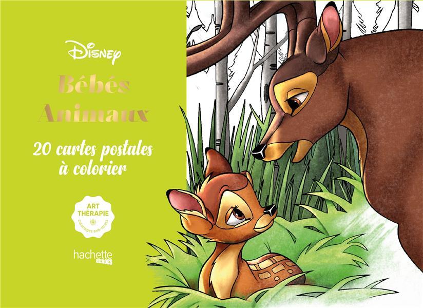 Art-thérapie ; bébés animaux ; 20 cartes postales à colorier