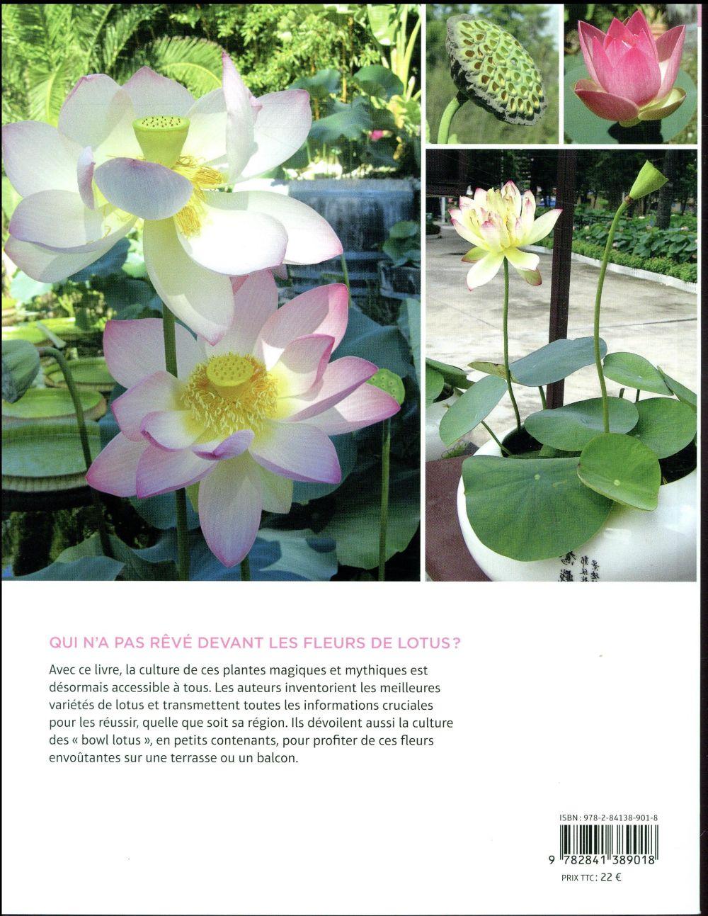 Lotus ; les connaître et les réussir sous nos climats