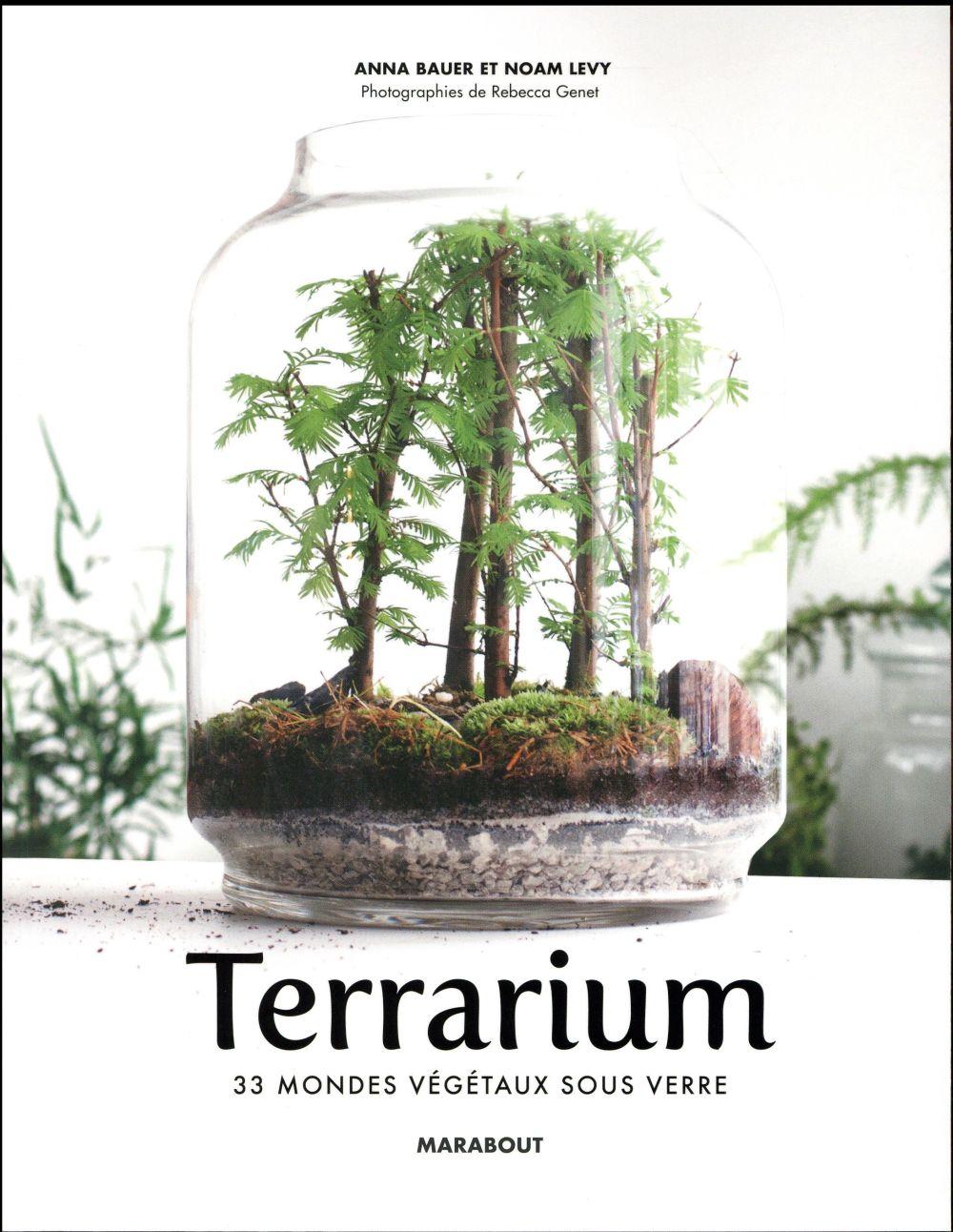 Le Guide Des Terrarium Tableaux Vegetaux Kokedama Noam Levy Marabout Grand Format Le Hall Du Livre Nancy