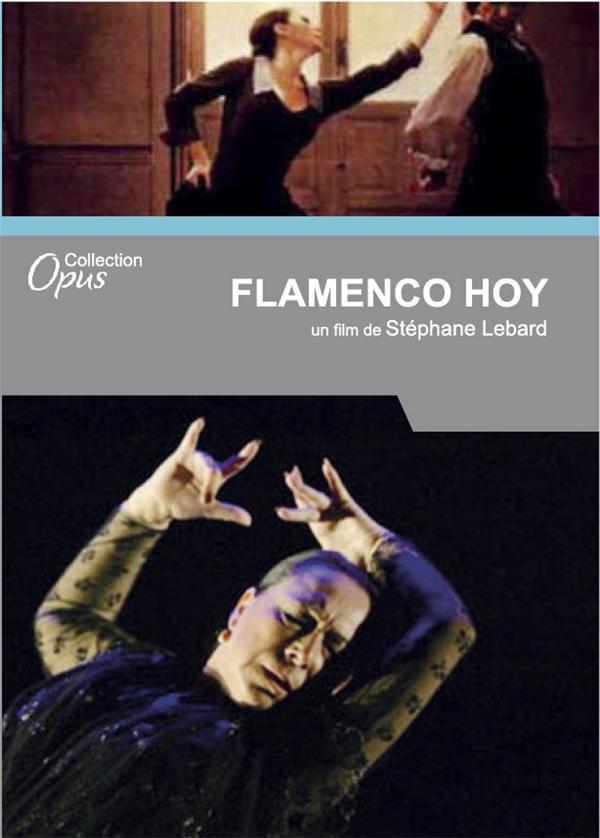 flamenco hoy: Cristina Hoyos