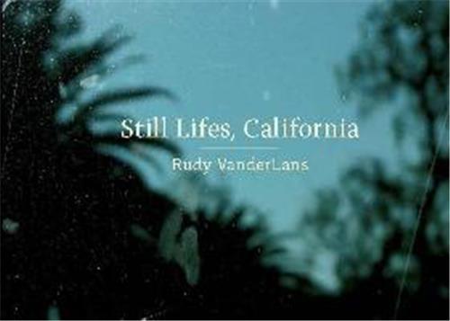 Rudy vanderlans still lifes california