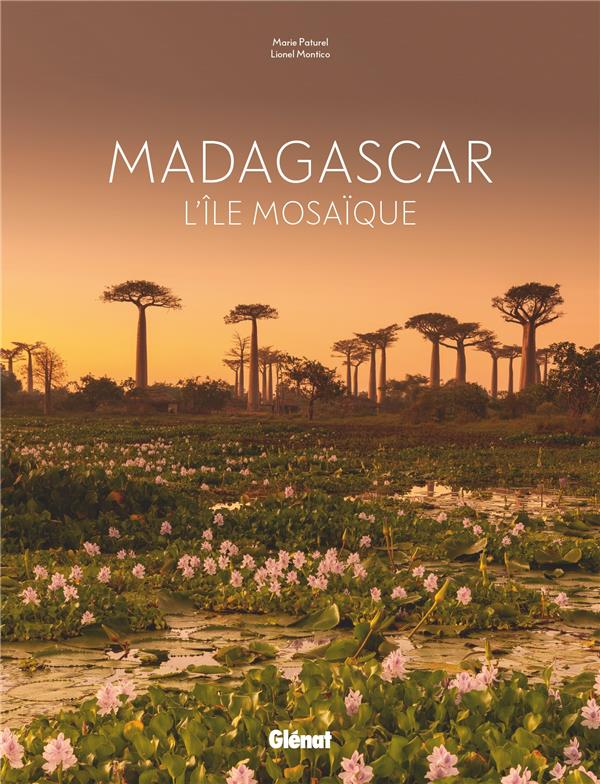 Madagascar ; l'île mosaïque