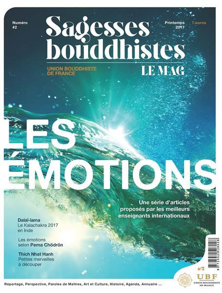 Sagesses bouddhistes : les emotions