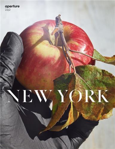 Magazine aperture 242 new york /anglais